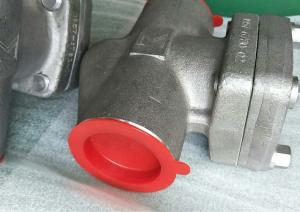 Piston check valve Alloy 20 Class 800 NPT ends
