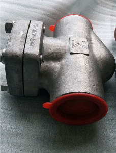 Piston check valve Alloy 20 Class 800 NPT ends side view