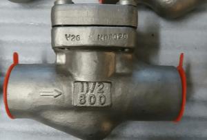 Piston check valve Alloy 20 body and trim body marking