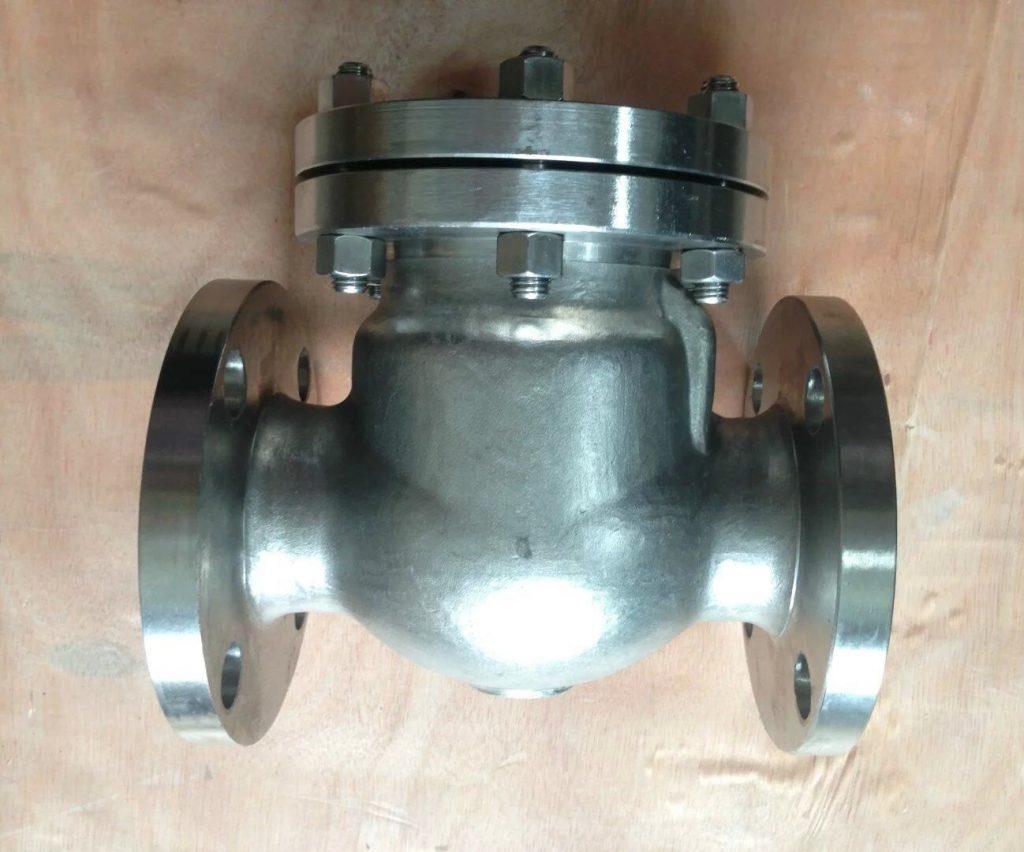 Swing check valve cast Titanium B381 Gr 2 back-min